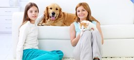 Cheap Upholstery Couches and Sofa Set Cleaning Melbourne