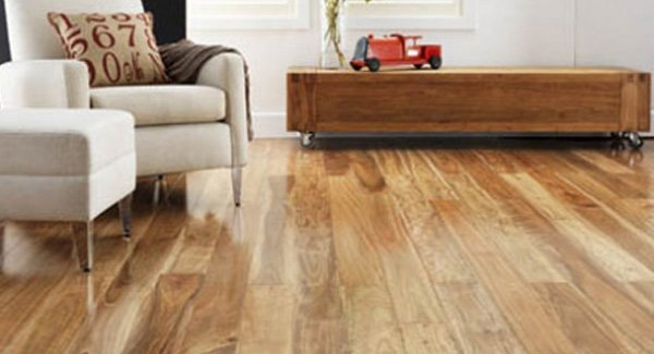 Cheap Timber Vinyl And Hard Floor Cleaning