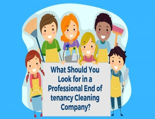 What Should You Look for in a Professional End of Tenancy Cleaning Company?
